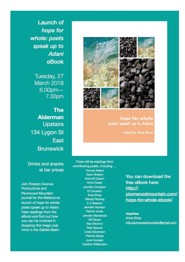 hope-for-whole-launch-flyer